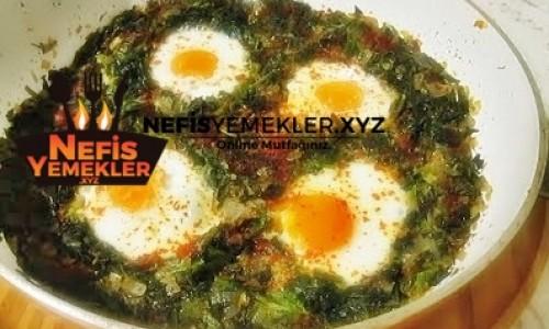 Fırında Yumurtalı Ispanak Yemeği Tarifi